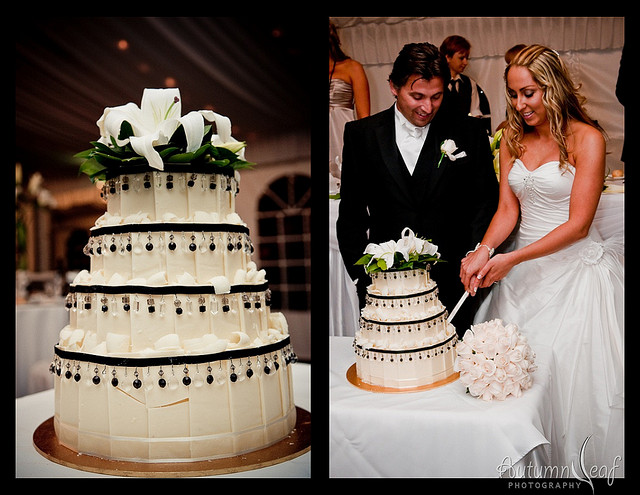 Mandi and Pierre - Wedding Cake