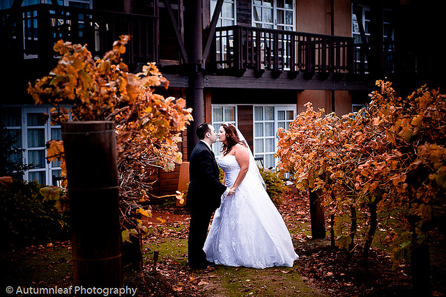 Pamela & Adam's Wedding - Romance at the Vines