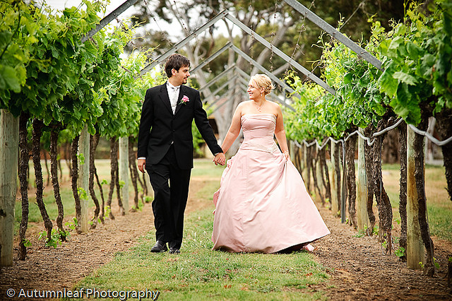 Prue & Paul's Wedding-Walking through the vines